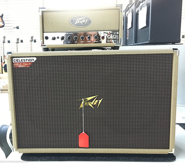peavey 2x12 guitar speaker cabinet with classic 20 mh tube reverb. Black Bedroom Furniture Sets. Home Design Ideas