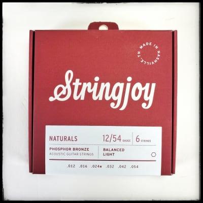Stringjoy Acoustic Naturals 12-54