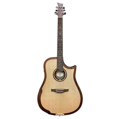 Riversong 2P G2 Performer - Electro-Acoustic Guitar for sale