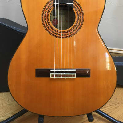 Vintage Classical Guitar - Made in Spain - Rosewood Back and Sides - w/case for sale