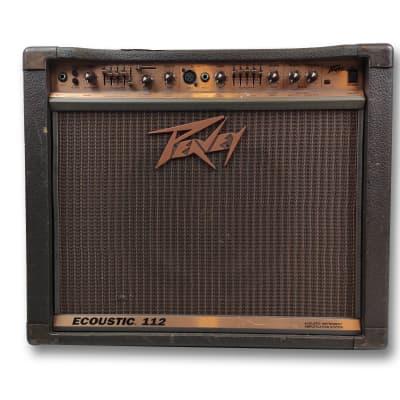 Peavey Ecoustic 112 100-Watt 1x12 Acoustic Instrument Amplification System