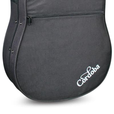 Cordoba Cordoba Polyfoam Classical Guitar Case for sale