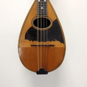 Larson Bros Stetson Mandolin - Vintage Larson Bros Mandolin for sale