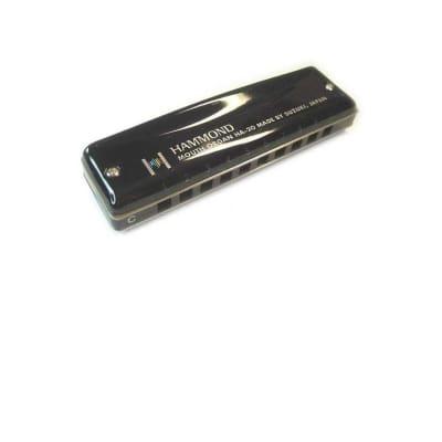 Suzuki Hammond  Key D