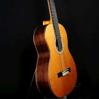 Cashimira 144 Palosanto ( Indian Rosewood ) Fully Solid handmade in Spain 2015 for sale