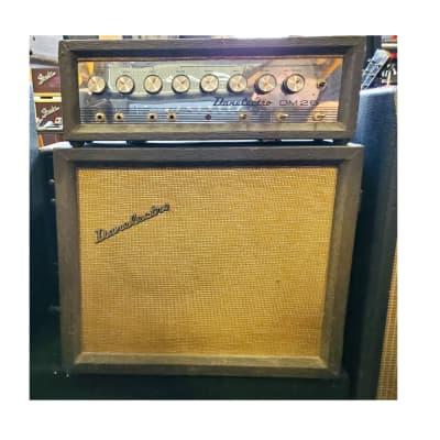 Danelectro Dm 25 Convertable Amplifier for sale