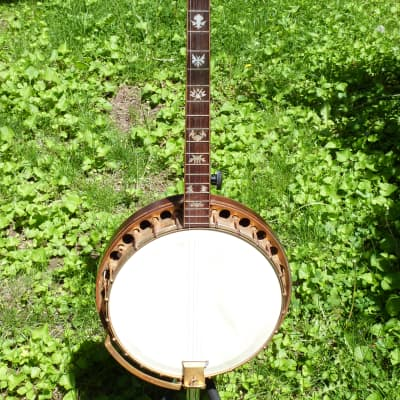 Paramount Style F Tenor Banjo William lange for sale