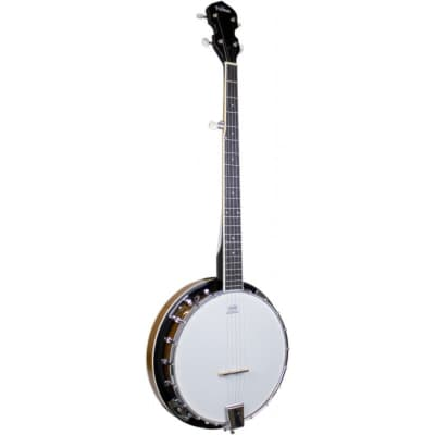 Freshman FBANJO5 Closed Back 5 String Banjo for sale