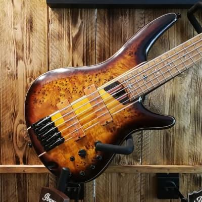 Ibanez SR5PBLTD-DEL Soundgear Premium 5-String Bass Dragon Eye Burst Low Gloss 2020