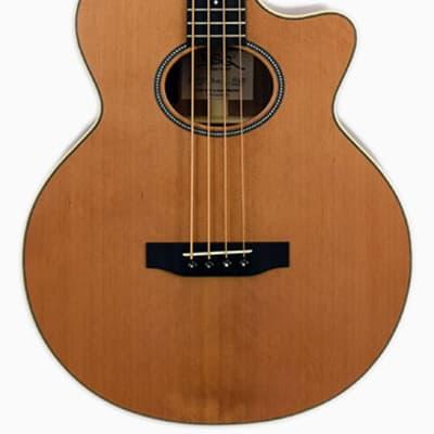 BSG Acoustic Bass GJ 10 CF Cutaway Cedar for sale