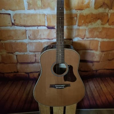 Seagull Coastline Momentum HG Cedar/Cherry Dreadnought with Fishman Electronics 2019 High Gloss Natural
