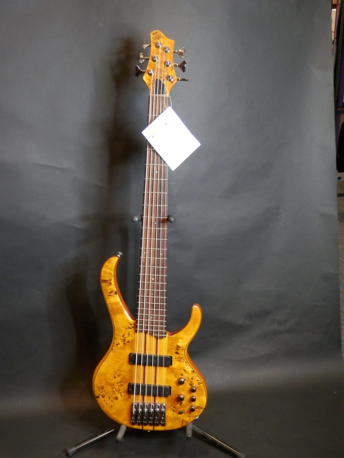 6 String Electric Bass