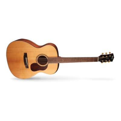 Cort Gold-O6 Natural Acoustic Guitar for sale