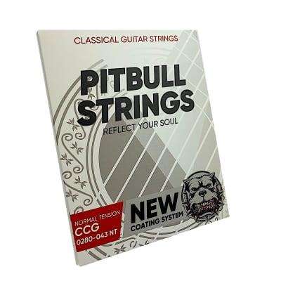 Premium Classical Guitar Strings 0280-043 - Pitbull Strings  Coated Series - Normal Tension - CCG-NT