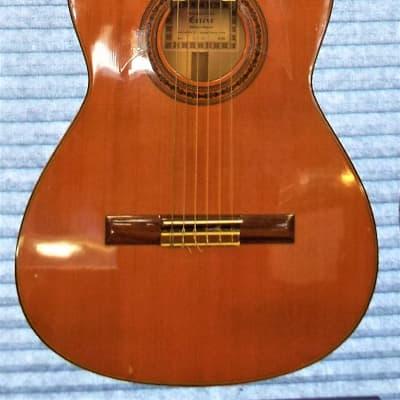 Esteve ESTEVE 1.7 SM Classic Acoustic Guitar  1999 Honey for sale