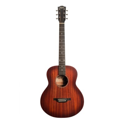 Tokai Terra Nova M3 Model Mini Acoustic-Electric Guitar (Vintage Sunburst Satin) for sale