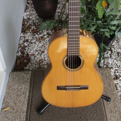 Giannini AWN 70 Classical~Nylon String~Natural Guitar w/Case~Vintage~Brazil~ for sale