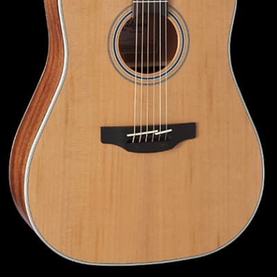 Takamine GD20CE-NS Dreadnought Cutaway Acoustic-Electric Guitar for sale