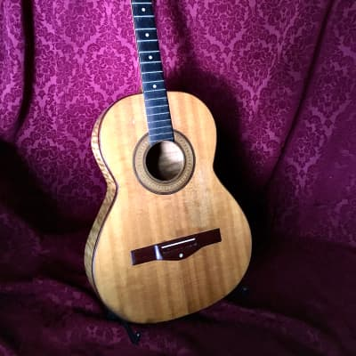1973 Dake Traphagen Guitar #2 Project for sale