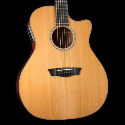 Washburn WLG110SWCEK Woodline Grand Auditorium Cutaway 6-String Acoustic-Electric Guitar w/Hard Case
