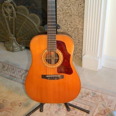 Bozo Podunavac  Dreadnaught Guitar 1965 for sale