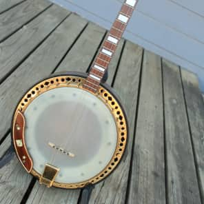 Kay Silva Tenor 4 string Closed Back Banjo 1950's Brazilian Rosewood for sale