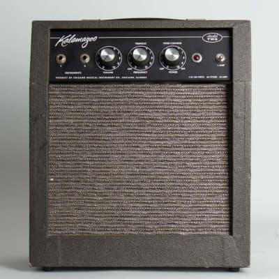 Kalamazoo  Model Two Tube Amplifier,  c. 1966. for sale