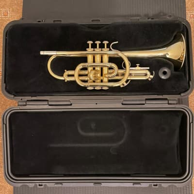 Cornet Selmer Bach CR300 2001/2002 + all accessories and extra mouth piece