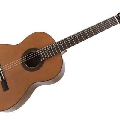 RAIMUNDO Raimundo STUDIO 120 elettrificata chitarra classica for sale