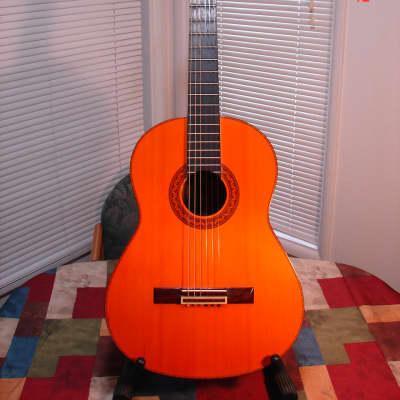 Vintage 1970's MIJ Matao MW-5 Nylon String Classical Guitar Rare Super Clean! for sale