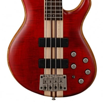 CORT A4 PLUS ARTISAN BASS - OPEN PORE BLACK CHERRY for sale