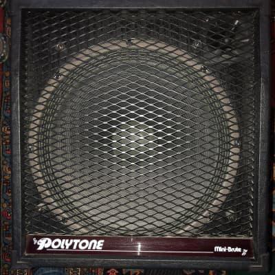 Polytone Mini Brute III,IV Sonic 2000 for sale