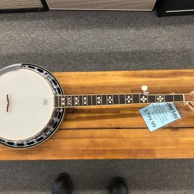 Pilgrim Closed Back 5-String Banjo Rocky Mountain Model 2 VPB045 for sale