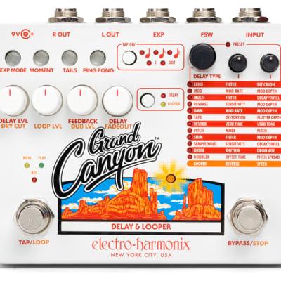 EHX Electro-Harmonix Grand Canyon Delay & Looper