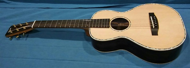 Guitar macassar ebony