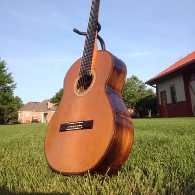 Hippner Grand Concert for sale