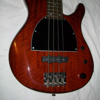 Yamaha TRBX174EW [Modified for Slap Techniques] + New Strings and Accessories
