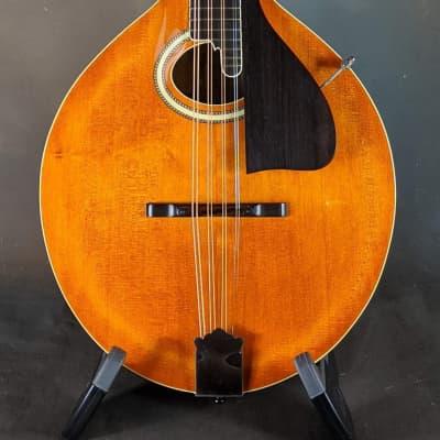 Sawchyn AO-2 Octave mandolin for sale