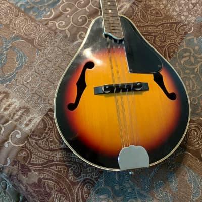 Hondo Mandolin for sale