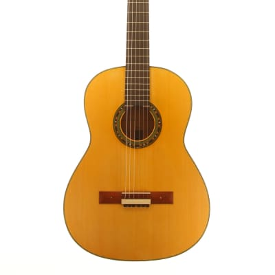 Domenico Pizzonia Classical guitar after Daniel Friederich 2020 for sale