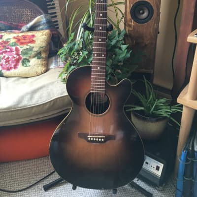 Pilgrim 1975 1987 Tobacco burst for sale