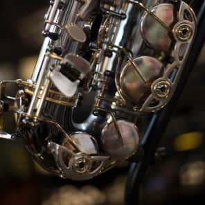 Selmer AS42B Professional Model Alto Saxophone