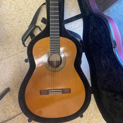 Lucio Nunez Classical guitar 2011 Cedar for sale