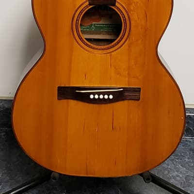 Vintage Giannini  GS380  Acoustic Guitar (As Is For Repair) for sale