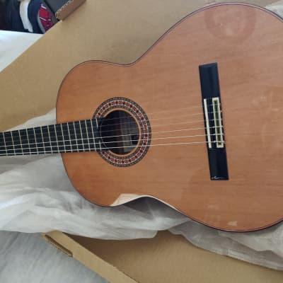 Manuel Rodriguez Mod A spanish guitar | Reverb