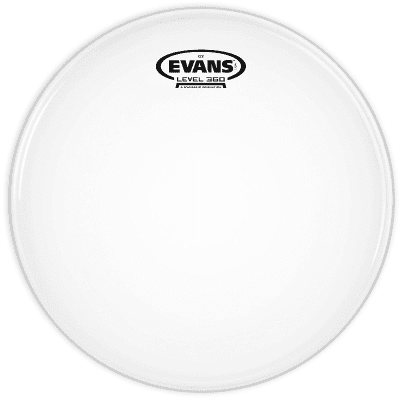 """Evans TT06G2 G2 Clear Drum Head - 6"""""""