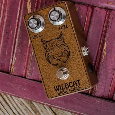 Basic Audio Wildcat