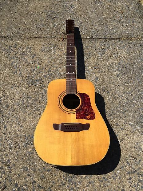 19a4b1449cd Doc Watson Elger 12-string Vintage 1960s 1950s Brazilian