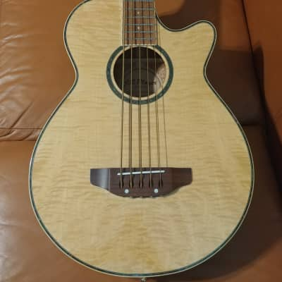 JB Player Acoustic/Electric 5 string Bass JBEAB-4000-N for sale