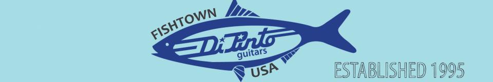 DiPinto Guitars / Vintage